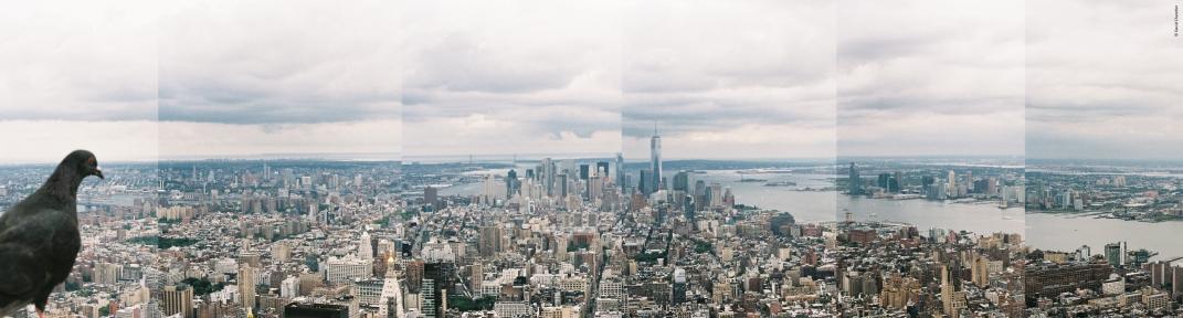 New York City - Fragments - Minolta SRT 100b et Rokkor 50mm.